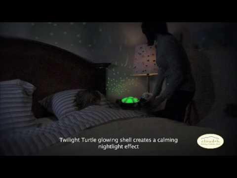 Turtle Night Sky Constellations