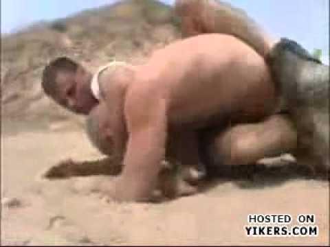 felony fights desert