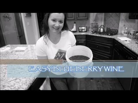 HOW TO - Easy Blueberry Wine Part 1