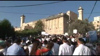Tour Hebron with David Wilder YouTube video