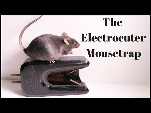 The Electrocuter Mousetrap From 1947.   Mousetrap Monday