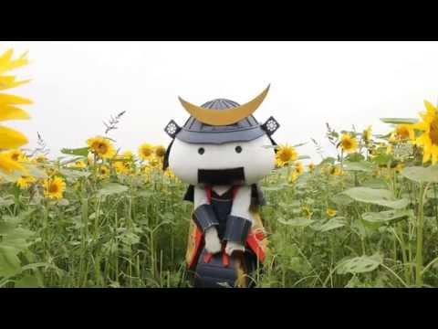 「むすび丸の【伊達な旅】日記」舘矢間ひまわり畑編