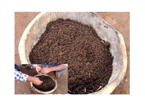 गोबर की शक्तिशाली खाद कैसे बनाये, gobar ki shaktishali khad kaise banaye,