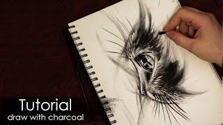 Скоростное рисование углем и карандашом - кот в стиле наброска (скетч, набросок) Алексей Михайлов