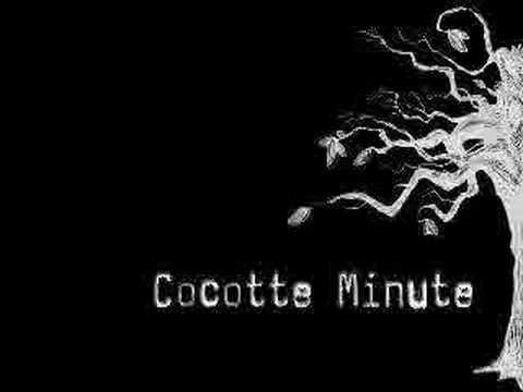 Cocotte minute - czeko