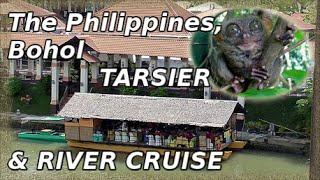 Loboc Philippines  City new picture : Bohol Tourist Loboc River Cruise & Philippine Tarsier