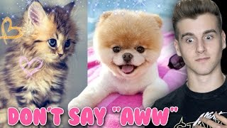 "Video Try Not To Say ""Aww"" (Impossible Challenge) MP3, 3GP, MP4, WEBM, AVI, FLV Juni 2019"