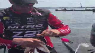 KVD's monster cull - day 1 Toledo Bend