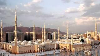 القرآن الكريم : سورة الفجر Quran Translation: Al-fajr : 89