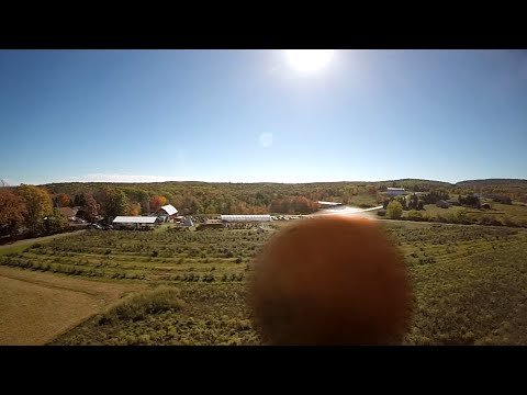 WATCH:  New Anti-Drone Technology...A Pumpkin?