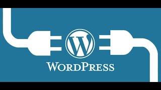 http://themedz.comCustom CSS Doesn't Work in WordPress How to Fix It