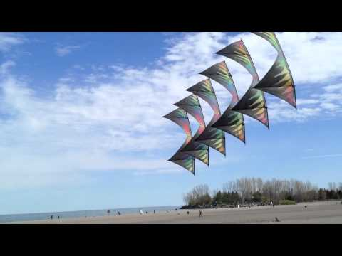 kite - A train of six kites flying in tandem, revolution kites, high performance precision kites. Filmed with an iPhone 4s in Toronto's beaches. The Kite is made by...