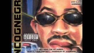 Ludacris-It wasnt us (Incognegro)