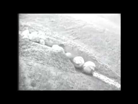 Spleen vs Ideal - une meute video (souvenirs LP)
