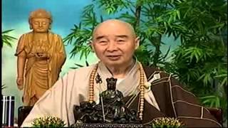 Kinh Vô Luợng Thọ (1998) tập 97&98 - Pháp sư Tịnh Không
