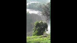 Blue Nile Falls1