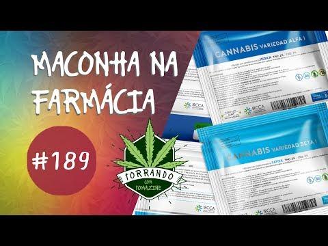 Maconha no Uruguai, algumas curiosidades - Torrando com Tomazine #189