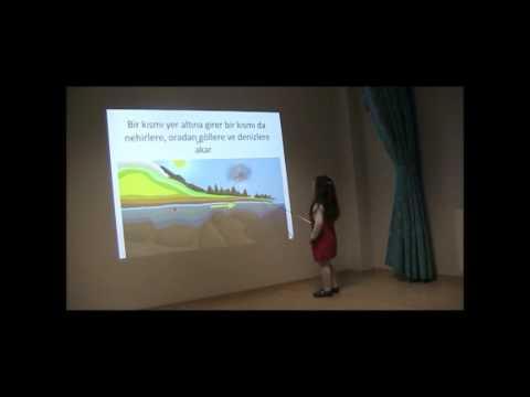 Ataşehir Yeni Dünyalar Anaokulu Balarıları Portfolyo Sunumu