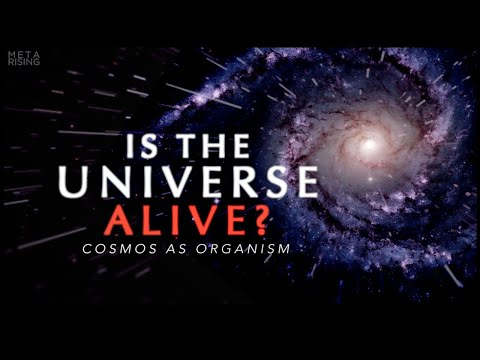 The Living Universe - Documentary about Consciousness and Reality | Waking Cosmos