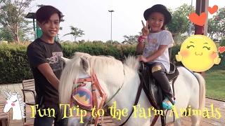 Download Video Zara naik Kuda Putih di Scientia | Riding Horse |  Fun Trip to The Farm Animals MP3 3GP MP4