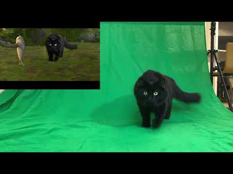 OwlKitty Behind The Scenes (How To Train Your Dragon)