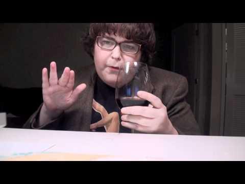 Wine Tasting With Andy Milonakis