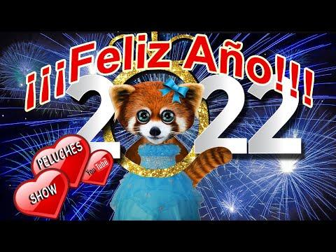 Frases bonitas - video gato dando mensaje de año nuevo  feliz año nuevo 2018  gracias y mis deseos  whatsapp