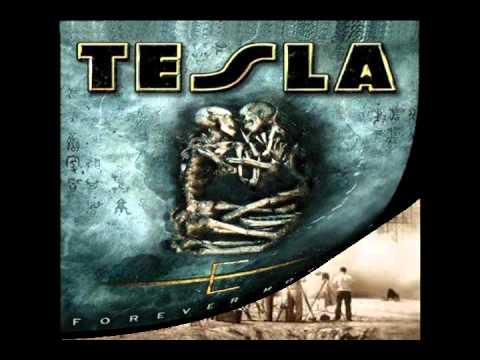 TESLA – Signs