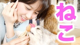 Video Yukirinu and Cats. MP3, 3GP, MP4, WEBM, AVI, FLV Agustus 2018