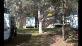Corowa Australia  city photos gallery : Rivergum Caravan and Camping Corowa NSW Australia
