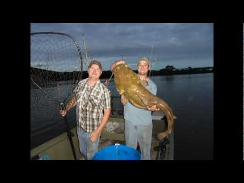 Mississippi Pool 2 Catfish Contest BIG FISH!