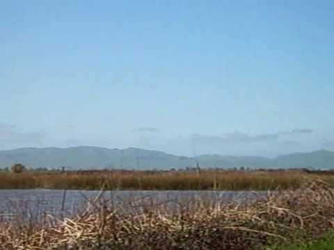 Suisun Marshes 2010.wmv