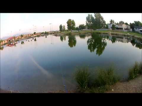 Fishing Trip: 7/19/14 Willow Pond