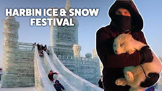 The Harbin 哈尔滨 Snow and Ice Festival 2019