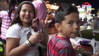 WHY DID THIS HAVE TO HAPPEN?!| SOLAR ECLIPSE| COUNTY FAIR  |VLOG 8|