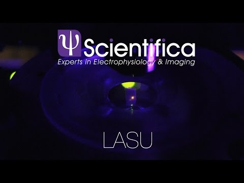 Scientifica - LASU  Optogenetics, photostimulation and uncag