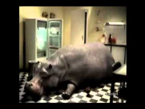 022 eichhof that is my beer hypo ad – funny beer commercial ad from Beer Planet.mp4