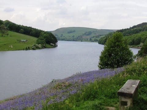 Ladybower Reservoir to Whinstone Lee Tor & its abundant wildlife round   peak district  Walks