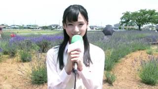 3分でわかる「久喜市の花」【久喜市PRビデオ】