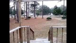 Yulee (FL) United States  City pictures : Snow in Yulee Florida January 08, 2015
