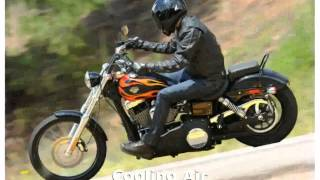 4. 2010 Harley-Davidson Dyna Glide Wide Glide Features and Specification