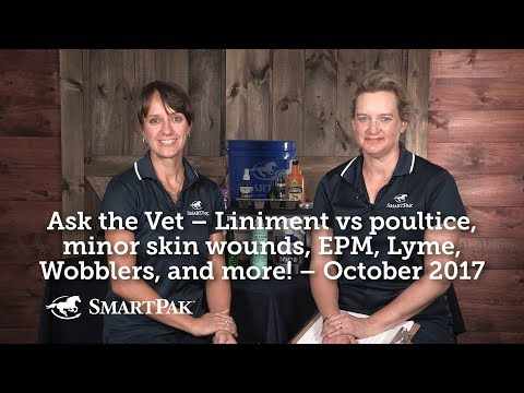 Ask the Vet – Liniment vs poultice, minor skin wounds, EPM, Lyme, Wobblers, and more! – October 2017