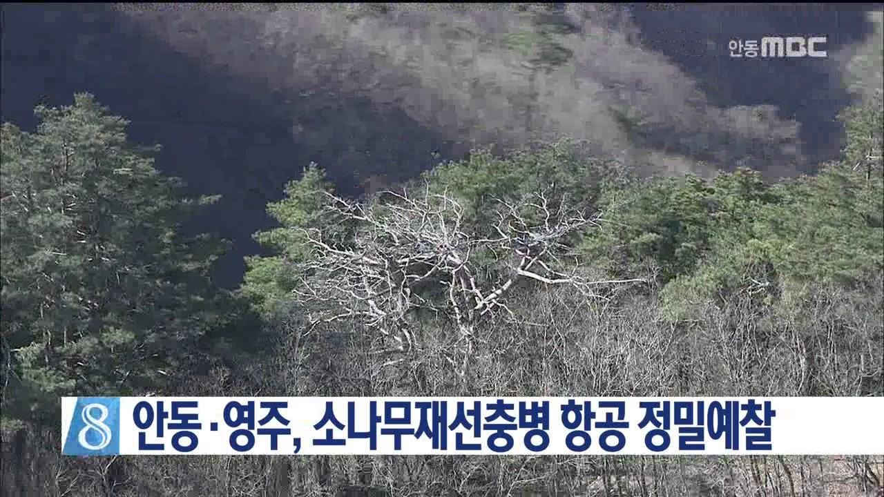 안동·영주, 소나무재선충병 항공 정밀예찰