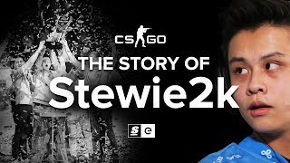 Video The Story Of Stewie2k: From Pug-Star to Superstar MP3, 3GP, MP4, WEBM, AVI, FLV Juni 2018