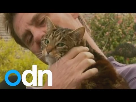 home - Subscribe here: http://bit.ly/ODNsubs A brave moggy, called Sally, has received hero status after it saved its owner from his burning home. Report by Sarah Kerr. Current affairs, amazing footage...