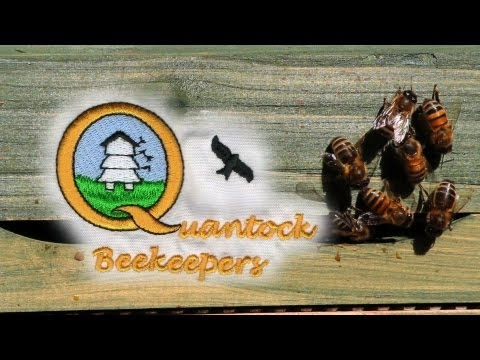Quantock Beekeepers new apiary Part 1