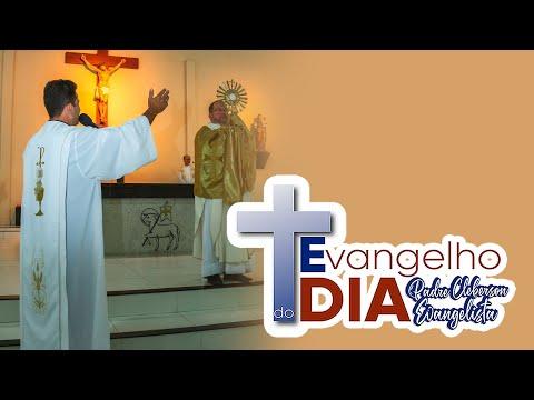 Evangelho do dia 23-05-2020 (Jo 16,23b-28)