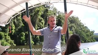 Calm water cruises and guided rainforest walks in Kuranda.