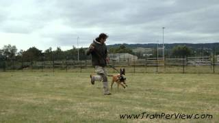 Andernach Germany  City new picture : Andernach, Germany Dog Training 2012 seminar
