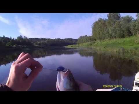 ловля судака на реке мста